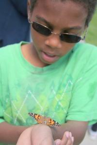young boy releasing a live butterfly