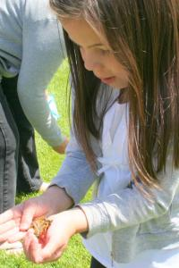 young girl releasing a live butterfly
